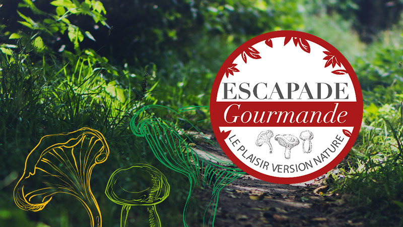 New range of trays ESCAPADE Gourmande